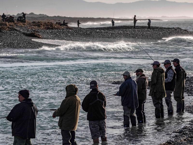 Sea-run-salmon-season-bag-limit-South-Island